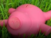 古怪的猪肉薄饼储钱罐充满了魅力
