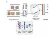 多元素无规合金的晶体结构预测