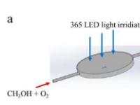 发现光催化效率对位点敏感