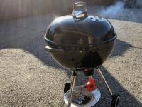 SmartFire烧烤控制器防止您的大绿鸡蛋