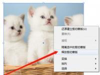 教程资讯:Adobe Illustrator cc2020释放剪切蒙版快捷键是什么 快捷键介绍