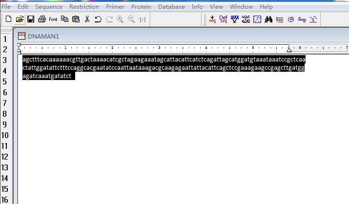 如何利用DNAMAN软件将碱基序列翻译成氨基酸序列