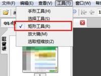 教程资讯:djvu阅读器(WinDjView)怎么进行截图 djvu阅读器(WinDjView)教程
