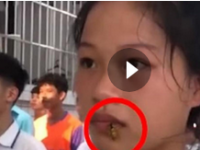 教官回应女生军训被蜜蜂爬脸