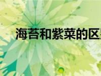 海苔和紫菜的区别(海苔和紫菜的区别)