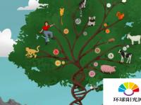所谓的垃圾DNA在哺乳动物发育中起着关键作用